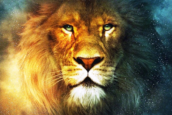 О львах