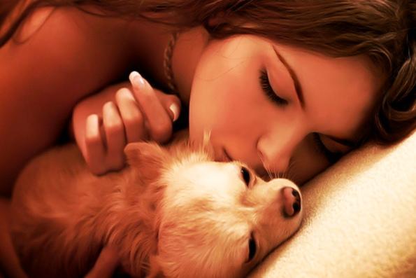 собака в домашних условиях - интересные факты